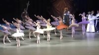 芭蕾舞 睡美人一幕 仙子们的舞蹈  Yulia Stepanova马林斯基剧院