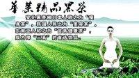 安化黑茶9大保健功效加盟Q907044228