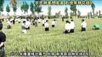 《乡村科技》第253期2011河南省秋季重大病虫害发生趋势会郏县农业跨越式发展花培8号小麦品种优势视频