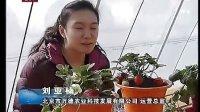 视频: 草莓苗http://www.cnhnb.com/sell/caomei