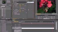PremiereCS5视频教学94  删除一个或多个关键帧