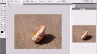 [PS]photoshop cs4 教程 11. 拷贝与粘贴命令