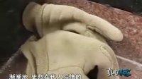 """2011年2月20日""""真心博客""""节目视频:《南昌最后一位代写书信的长者》"""