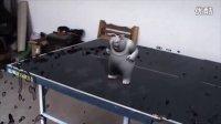 maya特效 影视动画 特效后期制作 个人短片