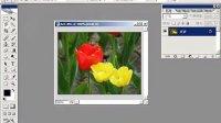 [PS]Photoshop CS2 不规则选择工具组