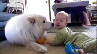 宝宝和狗狗做朋友 温暖的场面太无敌了-搞笑视频-爱奇艺_6
