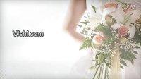 VJ师网_LED大屏幕VJ视频素材_唯美婚庆AE片头模板