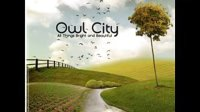 【有愛推】Owl City – Alligator Sky(Long Lost Sun Remix)
