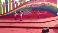 邯郸市丛台公园开心乐园《中国的月亮》完整版20121115
