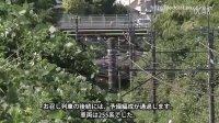 日本皇室御用列车E655系 _外房線上行走