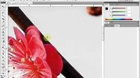 [PS]《PhotoshopCS5视频教程全集》33-使用钢笔