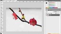 [PS]《PhotoshopCS5视频教程全集》22-移动工具