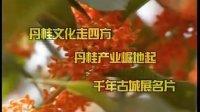 绿森食品专营店丹桂