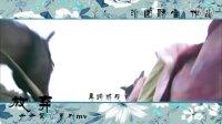 【步步惊心系列mv】之放弃(若曦与八爷的情感)by沁园听雪