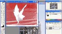 [PS]第十四节:Photoshop通过快速蒙版抠图,达到移花接木的效果-杨小波-767320753