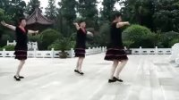 姜堰姐妹广场舞 恰恰 刘海砍樵