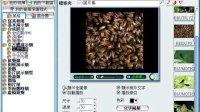 3D-Album-CS 声影制作家教程(4)立体展示效果