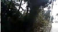 视频: 巴中市巴州区玉山镇盘龙石山上 王欣杰拍摄 QQ:1020410995