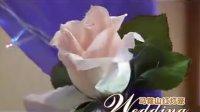 红灯笼婚庆-南湖宾馆-白雪公主主题婚礼