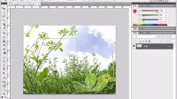 [PS]《PhotoshopCS5视频教程全集》63-更改画布大小