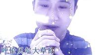 视频: 呼伦贝尔大草原 杨佳名QQ1821883050