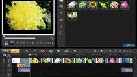 学习会声会影的视频材料(十)