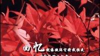 会声会影11中文版视频编辑与特效制作实例精讲 第六章  淡化字幕