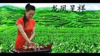 郑州铁观音批发,郑州市哪里有卖正宗的铁观音,茶叶批发市场