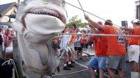 恐怖的大白鲨