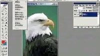 [PS]最有效的Photoshop全套视频教程_PS教程_PS学习第19集
