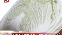 北京大白菜价格跳水 菜贱伤农