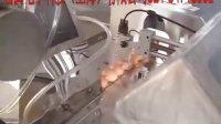 自动洗蛋选蛋全流水线喷码--番腾电子科技(上海)有限公司021-34716002
