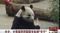 """台北:大熊猫团团圆圆龙年拼""""龙子""""[看东方]"""