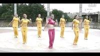 视频: 瑞金丽萍魅力广场舞 原创编舞-不应该 丽萍QQ群100745574