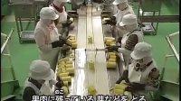 【日本科学技术】菠萝罐头的制作流程_标清