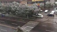春意浓浓 瑞雪增辉