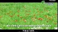 视频: 亚洲第一湿地 中国额尔古纳《呼伦贝尔天堂草原户外》http:www.hlbelyhw.com