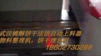 武汉桃酥饼干法饼自动上料器物料整理机