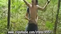 Twink Suspended Between The Trees
