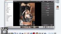 iPhoto 教程 4_5 旋转照片 Mac121中文教程