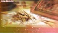 湖南省永顺县中医院艾滋病康复中心-2012杰出华人(品牌)大拜年