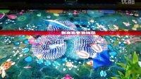渔乐无穷二代游戏机视频画面