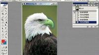 [PS]Photoshop全套视频教程_PS教程_PS学习第20集