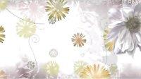 清新花瓣线条生长的绚丽背景视频素材,影视素材,来自西橘网