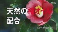苍井优(不是苍井空)资生堂TSUBAKI山茶花油