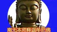 《大佛顶首楞严经》标准读诵10_标清.flv