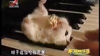 侦探歌剧 搞笑62www.xiuyinfang.com