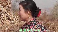 视频: cjj民间小调-柳琴戏《戏妻》_标清