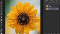 [PS]不规则选区的建立-Photoshop cs6从头学新教程