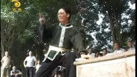 视频: 许宜显功夫【易经铁掌】百色新闻 2011.11QQ1019121886